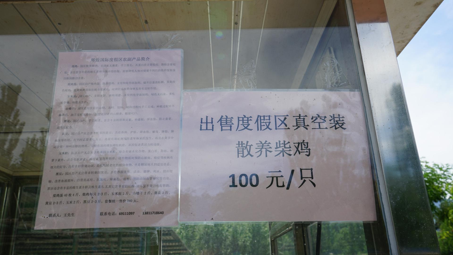 11.IMG_6002